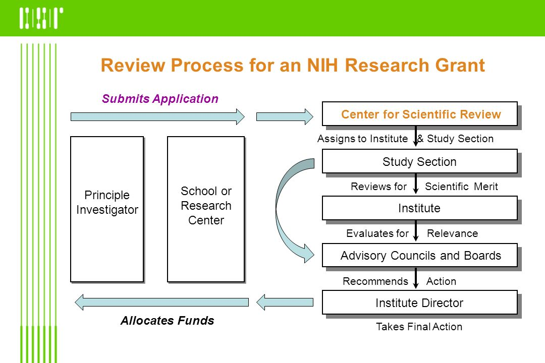 Summary Statement Summary of Review Discussion Essentially Unedited Critiques Budget Recommendations Administrative Notes Priority Score and Percentile Ranking Results are documented by SRO in a summary statement and forwarded to the PI and the assigned NIH Institute or Center, where a funding decision is made.