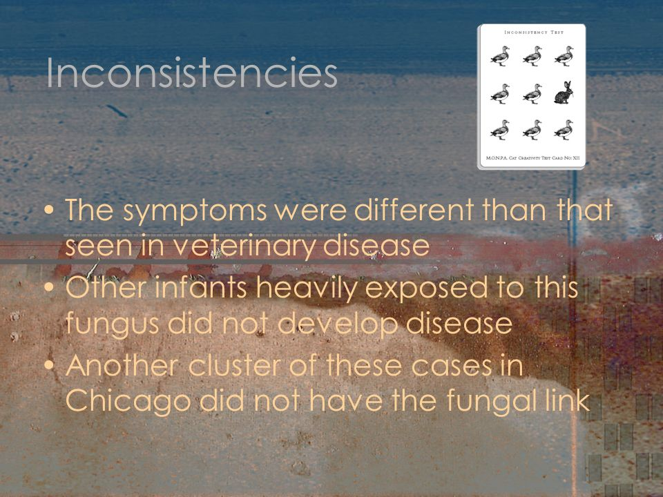 Inconsistencies The symptoms were different than that seen in veterinary disease Other infants heavily exposed to this fungus did not develop disease