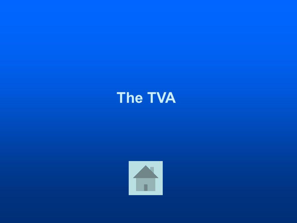The TVA