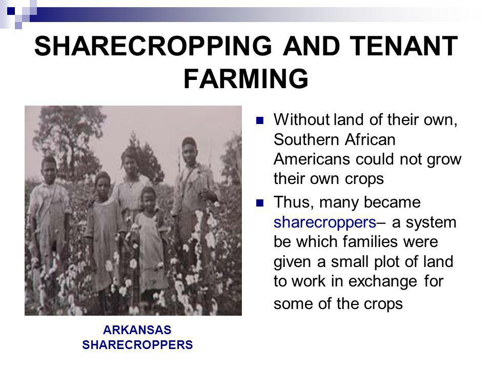 SHARECROPPING AND TENANT FARMING Without land of their own, Southern African Americans could not grow their own crops Thus, many became sharecroppers–