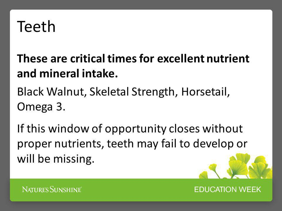 Teeth These are critical times for excellent nutrient and mineral intake. Black Walnut, Skeletal Strength, Horsetail, Omega 3. If this window of oppor