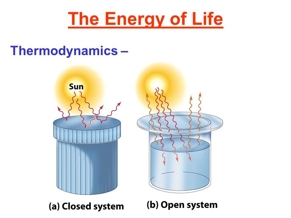 The Energy of Life Thermodynamics –