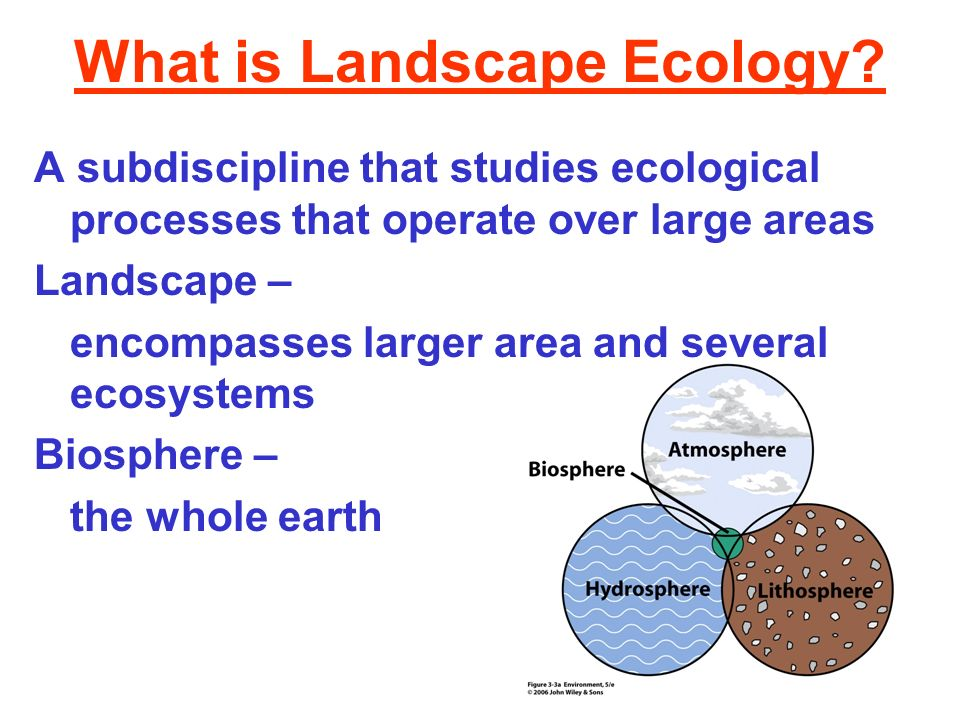What is Landscape Ecology? A subdiscipline that studies ecological processes that operate over large areas Landscape – encompasses larger area and sev
