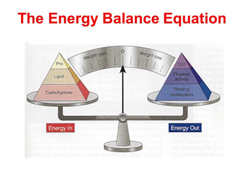The Energy Balance Equation