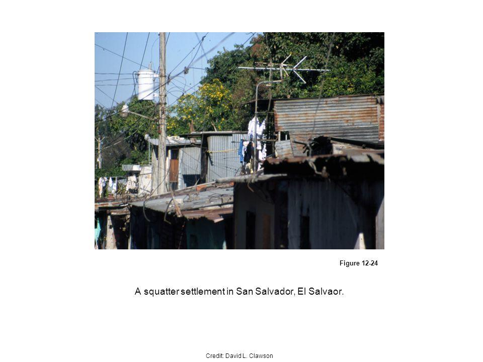Figure 12-24 A squatter settlement in San Salvador, El Salvaor. Credit: David L. Clawson