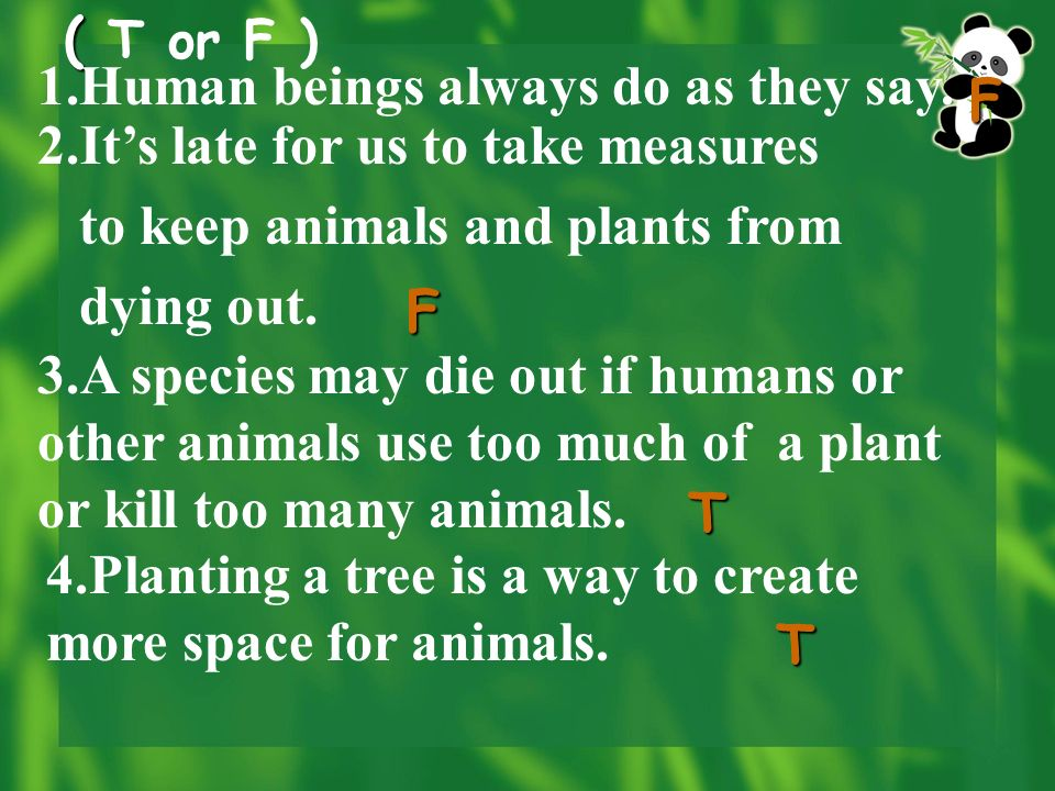 Paragraph 3: What are the things that we can do to help the animals and plants according to the expert.