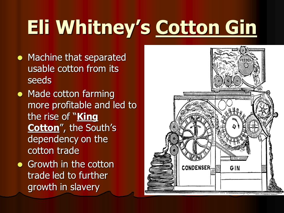 Eli Whitneys Cotton Gin Machine that separated usable cotton from its seeds Machine that separated usable cotton from its seeds Made cotton farming mo