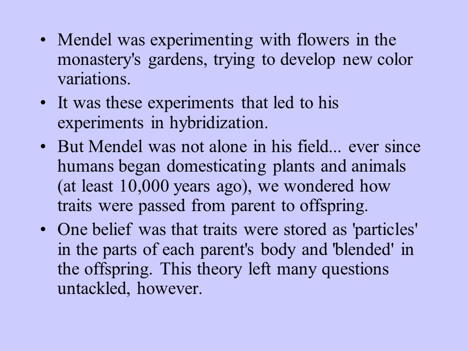 Mendels Law of Independent Assortment The Law of Independent assortment states that two or more pairs of alleles segregate independently of one another during gamete formation.