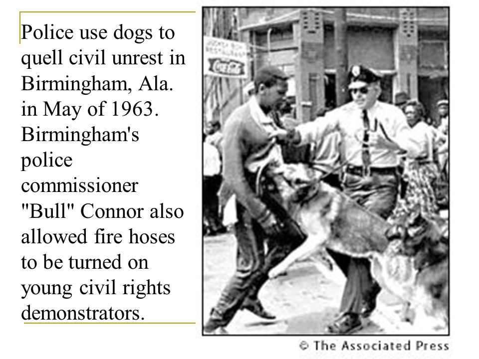 Police use dogs to quell civil unrest in Birmingham, Ala. in May of 1963. Birmingham's police commissioner