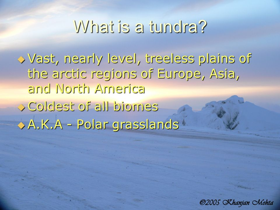 What is a tundra? Vast, nearly level, treeless plains of the arctic regions of Europe, Asia, and North America Vast, nearly level, treeless plains of