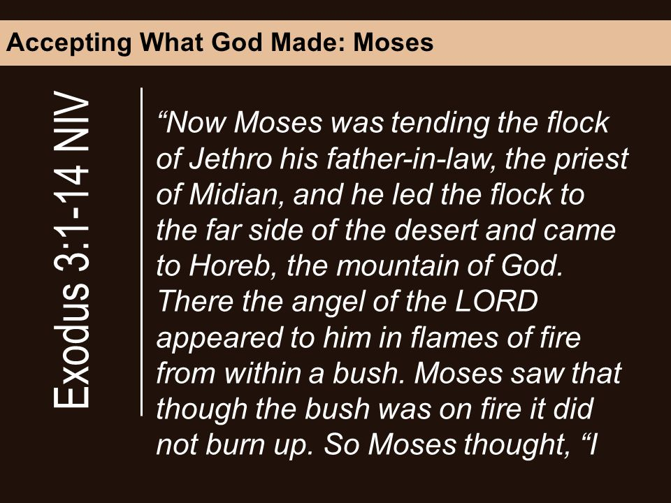 Accepting What God Made: Moses Now Moses was tending the flock of Jethro his father-in-law, the priest of Midian, and he led the flock to the far side