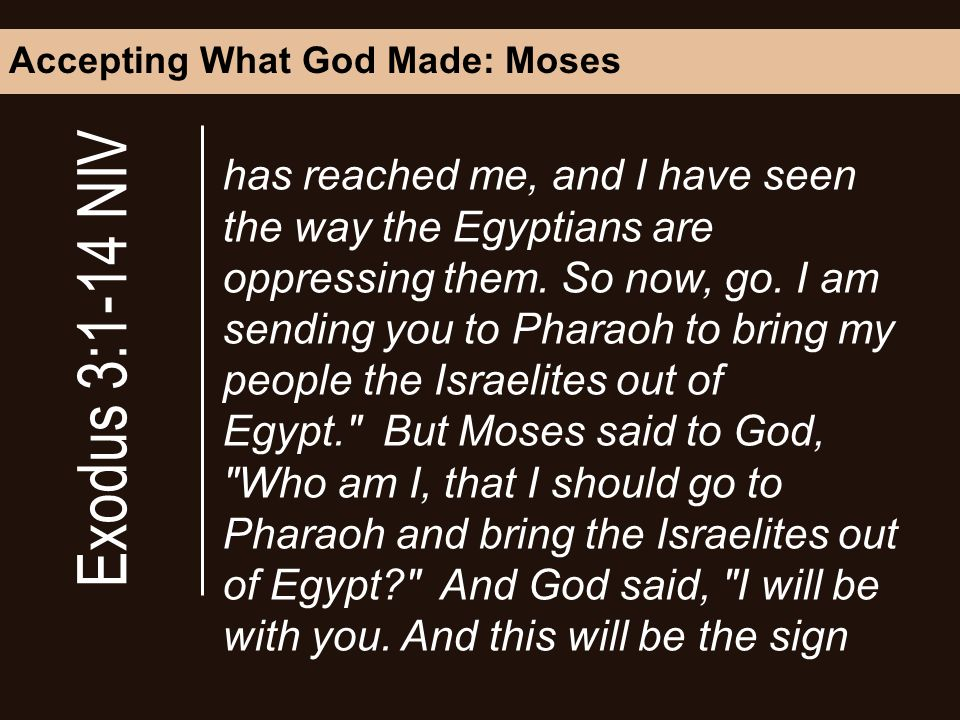 Accepting What God Made: Moses has reached me, and I have seen the way the Egyptians are oppressing them.