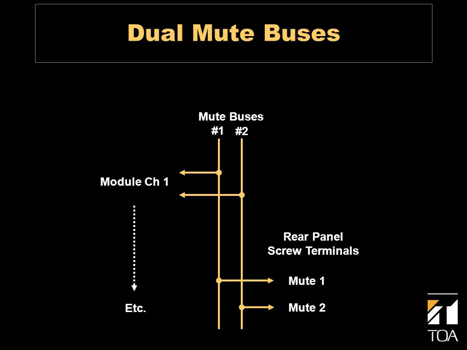 Dual Mute Buses Module Ch 1 Etc. Mute Buses #1 #2 Rear Panel Screw Terminals Mute 1 Mute 2
