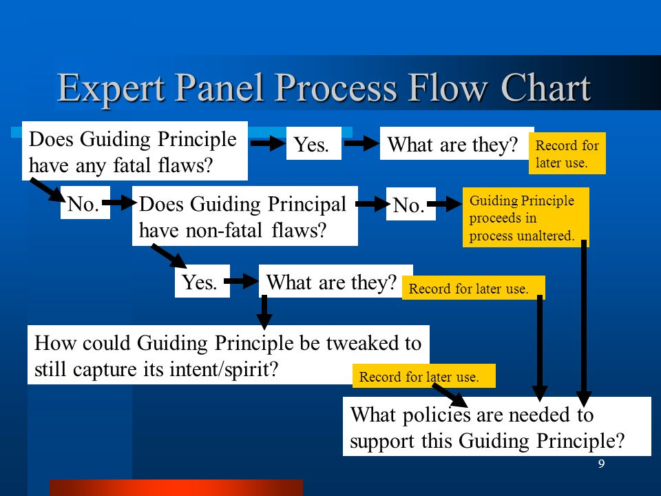9 Expert Panel Process Flow Chart Does Guiding Principle have any fatal flaws.
