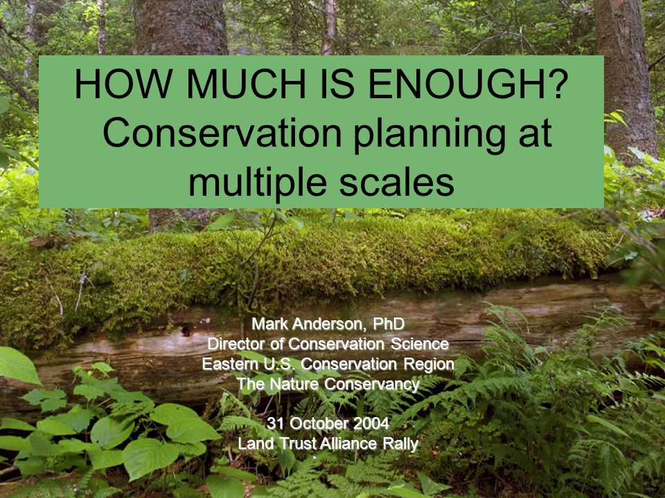 Critical Concepts Ecosystem Function: How big does an example of a feature have to be.