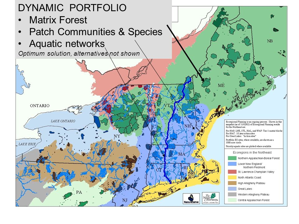 DYNAMIC PORTFOLIO Matrix Forest Patch Communities & Species Aquatic networks Optimum solution, alternatives not shown