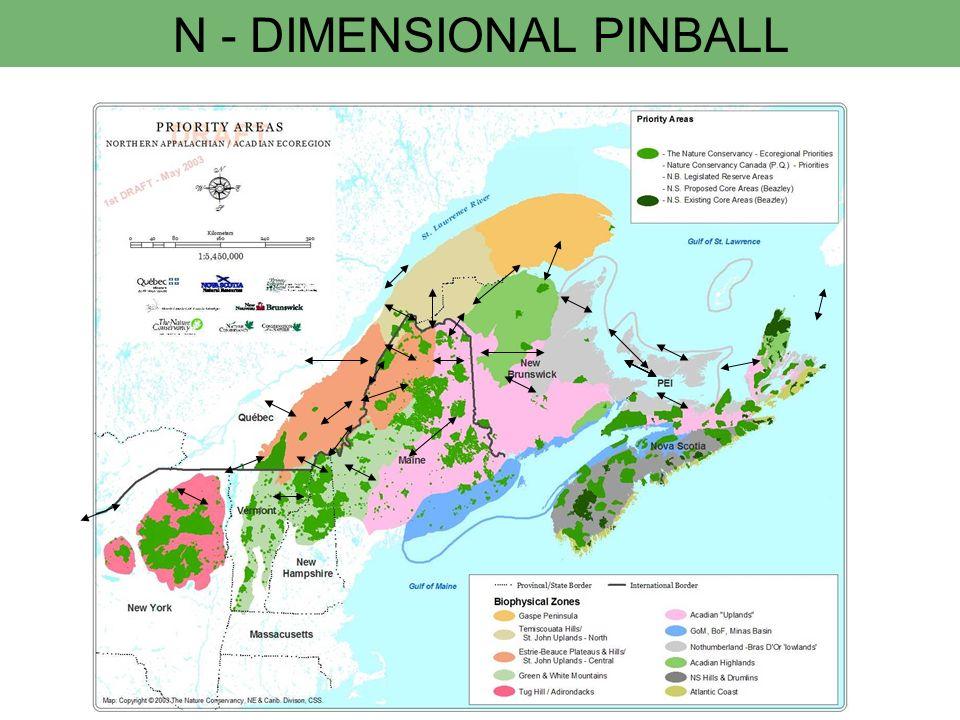 N - DIMENSIONAL PINBALL