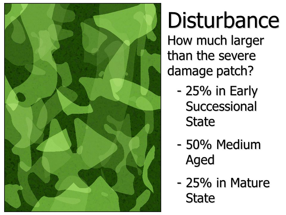 - 25% in Early Successional State -50% Medium Aged -25% in Mature State Disturbance How much larger than the severe damage patch