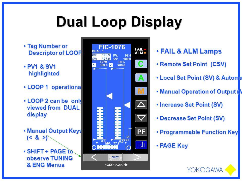 Dual Loop Display Increase Set Point (SV) Increase Set Point (SV) Decrease Set Point (SV) Decrease Set Point (SV) Programmable Function Key Programmab