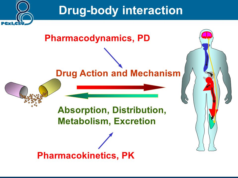 Drug Action and Mechanism Absorption, Distribution, Metabolism, Excretion Pharmacodynamics, PD Pharmacokinetics, PK Drug-body interaction