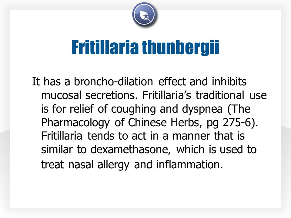 Fritillaria thunbergii It has a broncho-dilation effect and inhibits mucosal secretions. Fritillarias traditional use is for relief of coughing and dy