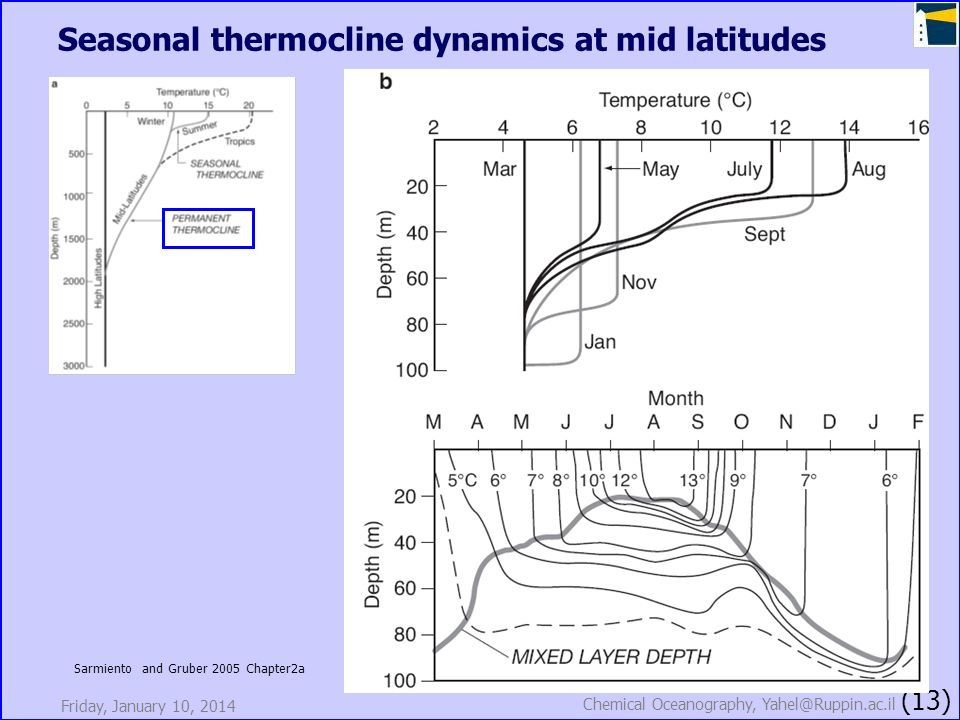 Friday, January 10, 2014 Chemical Oceanography, Yahel@Ruppin.ac.il (13) Seasonal thermocline dynamics at mid latitudes Sarmiento and Gruber 2005 Chapt