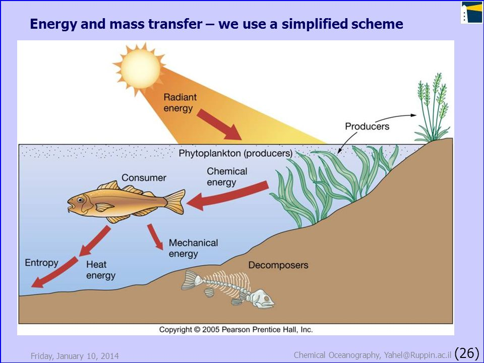 Friday, January 10, 2014 Chemical Oceanography, Yahel@Ruppin.ac.il (26) Energy and mass transfer – we use a simplified scheme