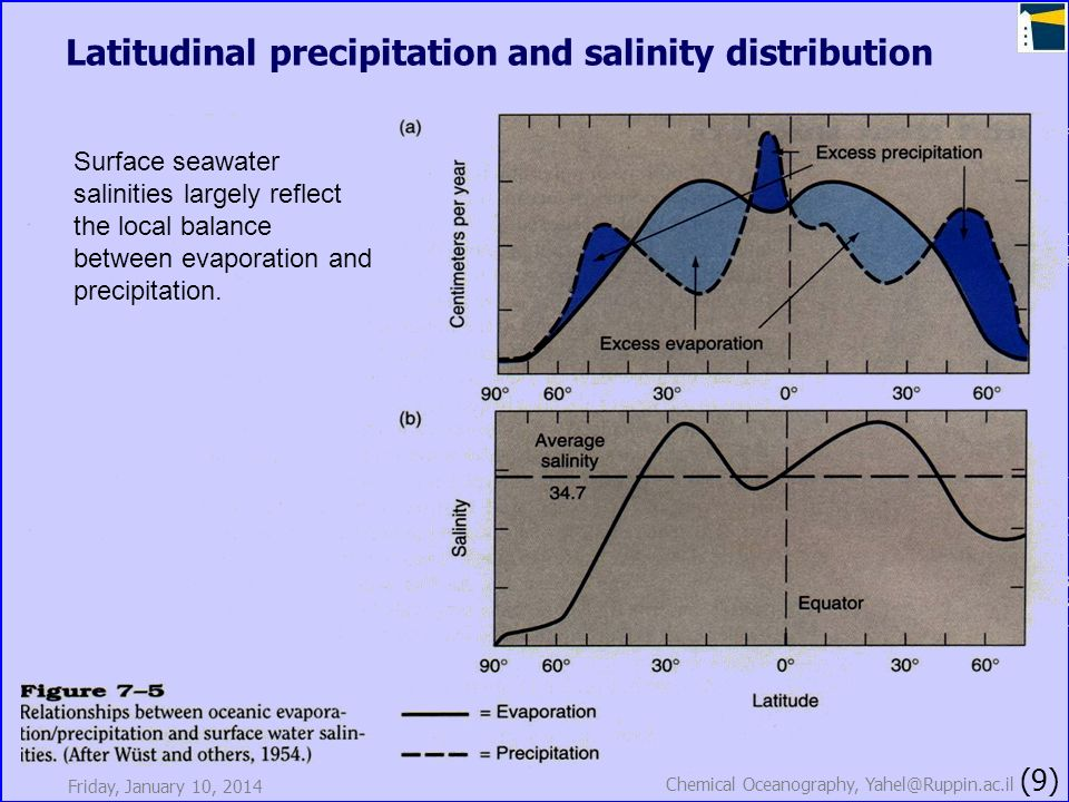 Friday, January 10, 2014 Chemical Oceanography, Yahel@Ruppin.ac.il (9) Latitudinal precipitation and salinity distribution Surface seawater salinities