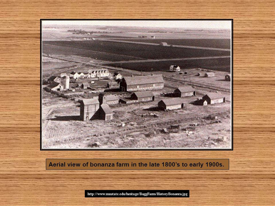 Aerial view of bonanza farm in the late 1800s to early 1900s. http://www.mnstate.edu/heritage/BaggFarm/HistoryBonanza.jpg