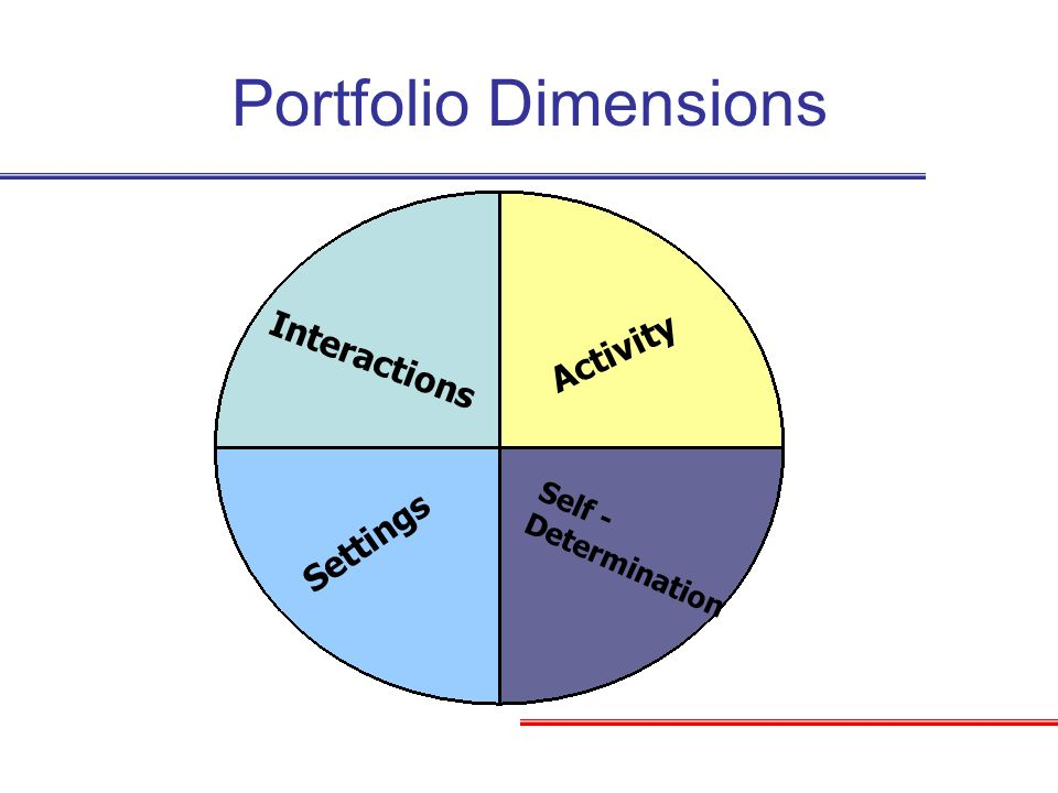 Activity Self - Determination Settings Interactions Portfolio Dimensions