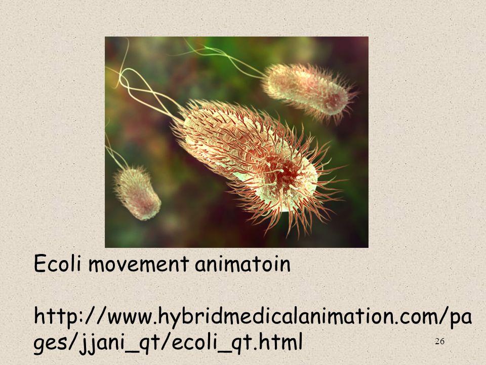 26 Ecoli movement animatoin http://www.hybridmedicalanimation.com/pa ges/jjani_qt/ecoli_qt.html