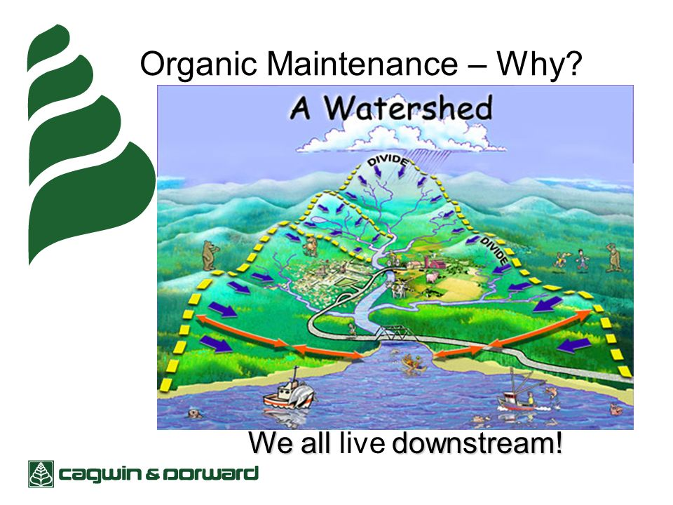 Organic Maintenance – Why We all downstream! We all live downstream!
