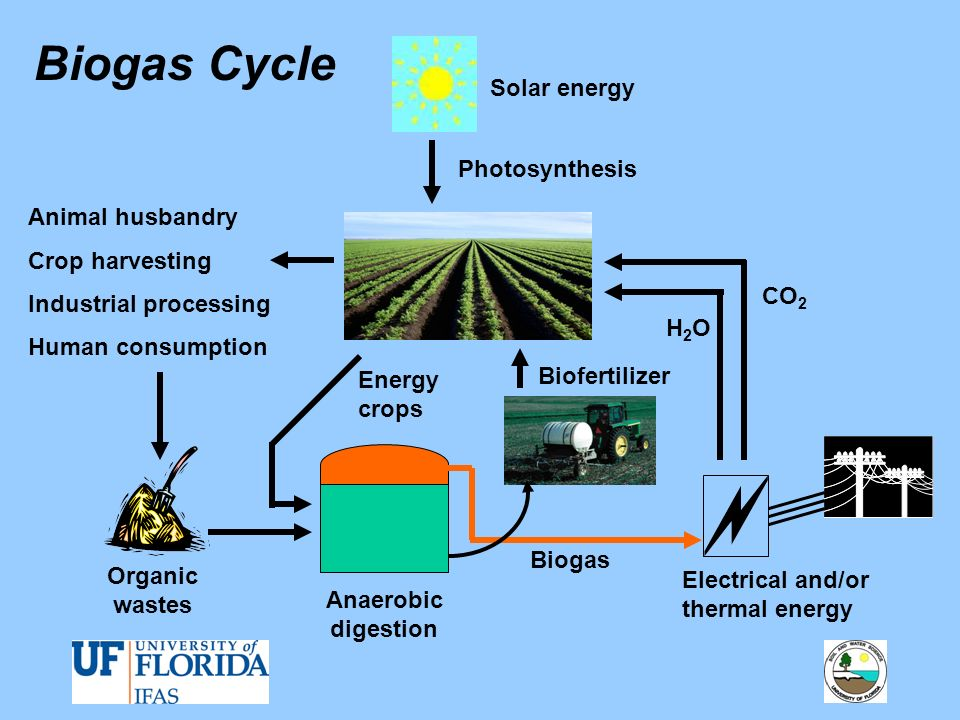 Electrical and/or thermal energy Biofertilizer Organic wastes Anaerobic digestion Biogas Solar energy Animal husbandry Crop harvesting Industrial proc
