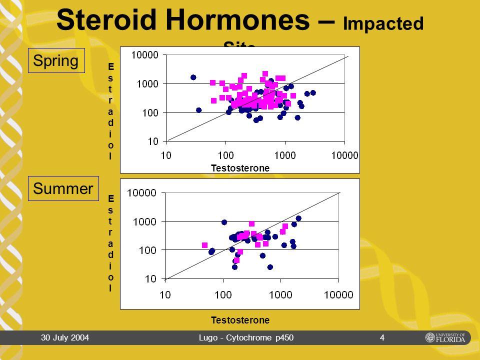 30 July 2004Lugo - Cytochrome p4503 Steroid Hormones – Control Site Spring Summer EstradiolEstradiol EstradiolEstradiol Testosterone