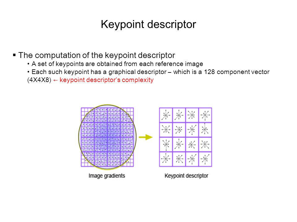 Keypoint descriptor The computation of the keypoint descriptor A set of keypoints are obtained from each reference image Each such keypoint has a grap