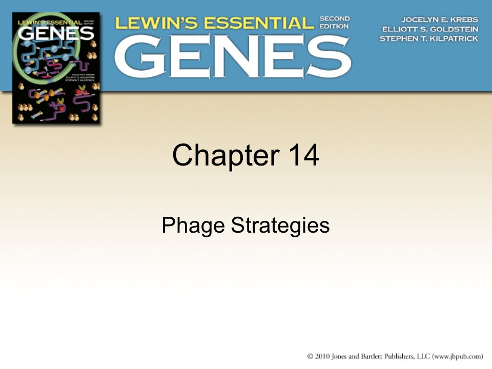 Chapter 14 Phage Strategies