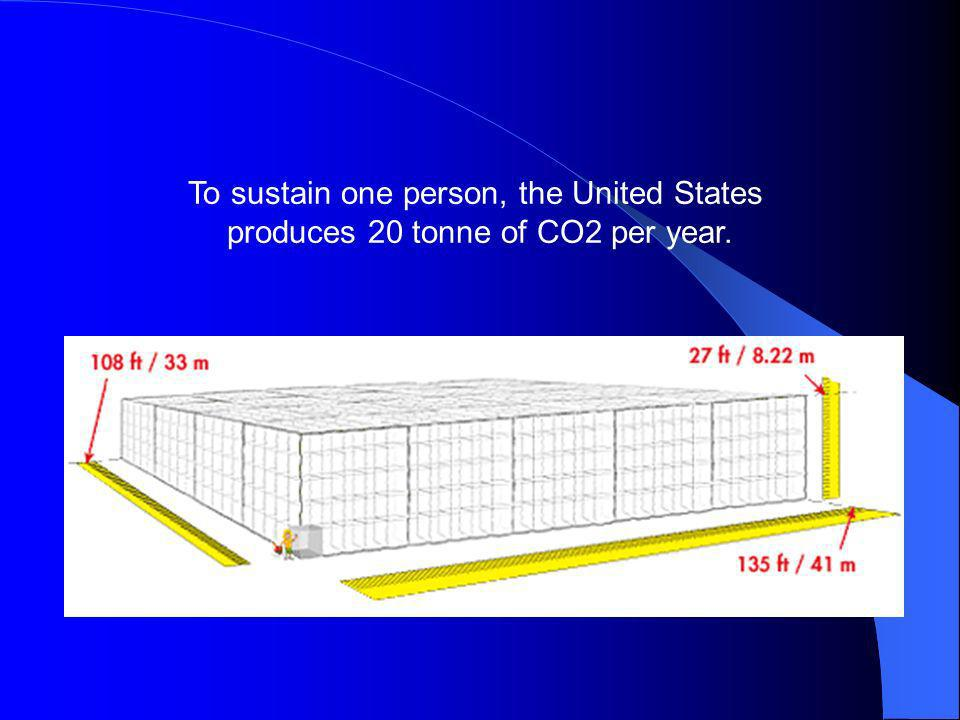 To sustain one person, the United States produces 20 tonne of CO2 per year.