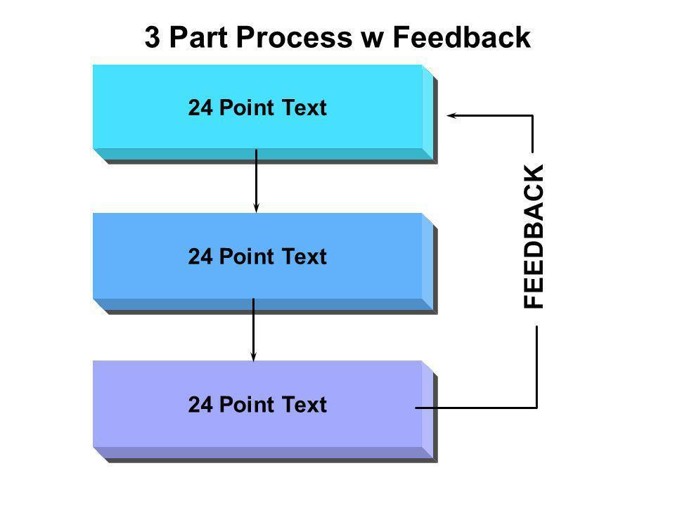 3 Part Process w Feedback 24 Point Text FEEDBACK