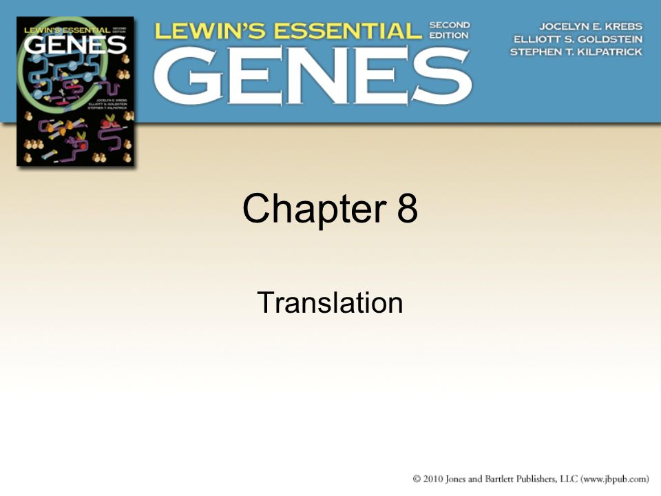 8.1 Introduction An mRNA contains a series of codons that interact with the anticodons of aminoacyl- tRNAs.