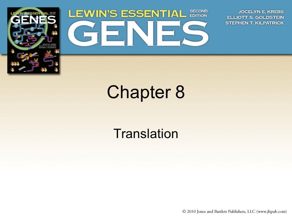 8.10 Translocation Moves the Ribosome Ribosomal translocation moves the mRNA through the ribosome by three bases.