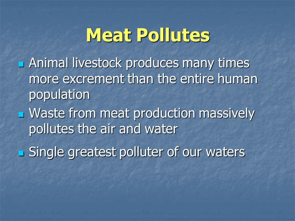 Meat Pollutes Animal livestock produces many times more excrement than the entire human population Animal livestock produces many times more excrement