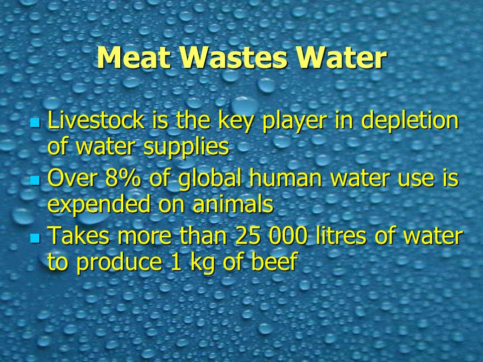 Meat Wastes Water Livestock is the key player in depletion of water supplies Livestock is the key player in depletion of water supplies Over 8% of global human water use is expended on animals Over 8% of global human water use is expended on animals Takes more than 25 000 litres of water to produce 1 kg of beef Takes more than 25 000 litres of water to produce 1 kg of beef