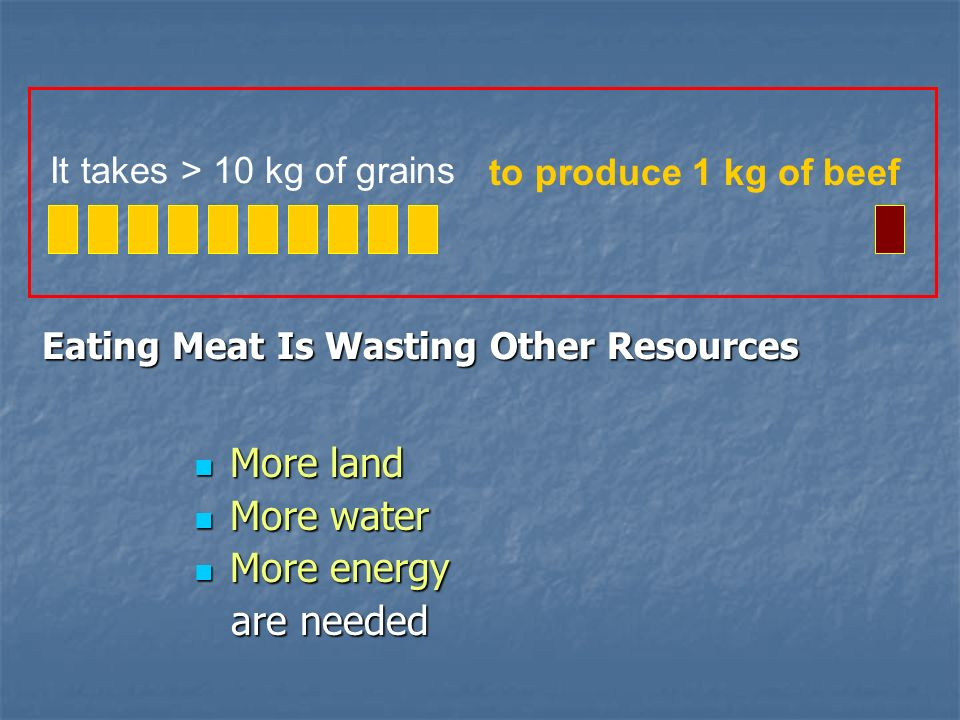It takes > 10 kg of grains to produce 1 kg of beef Eating Meat Is Wasting Other Resources More land More land More water More water More energy More e
