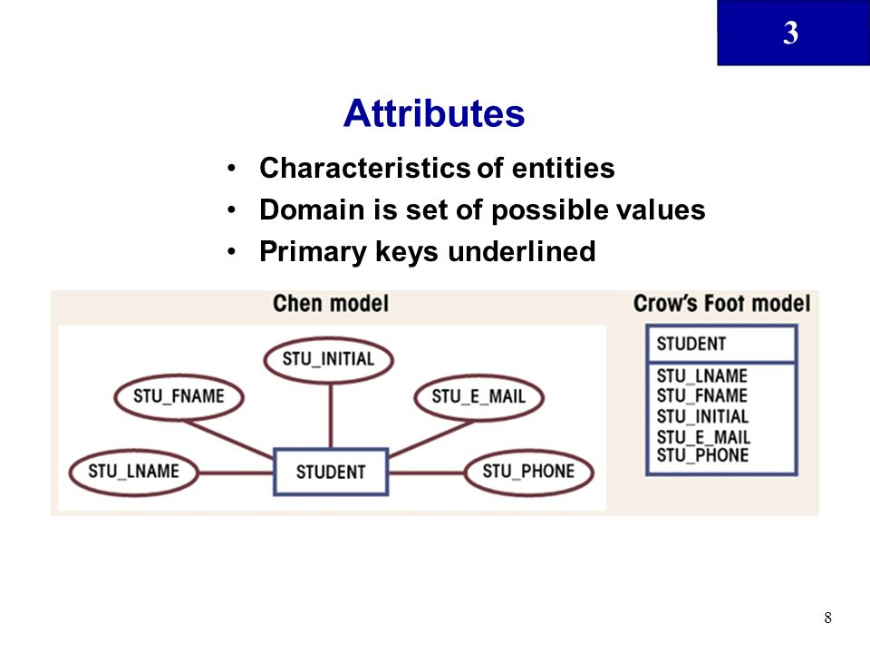 3 8 Attributes Characteristics of entities Domain is set of possible values Primary keys underlined