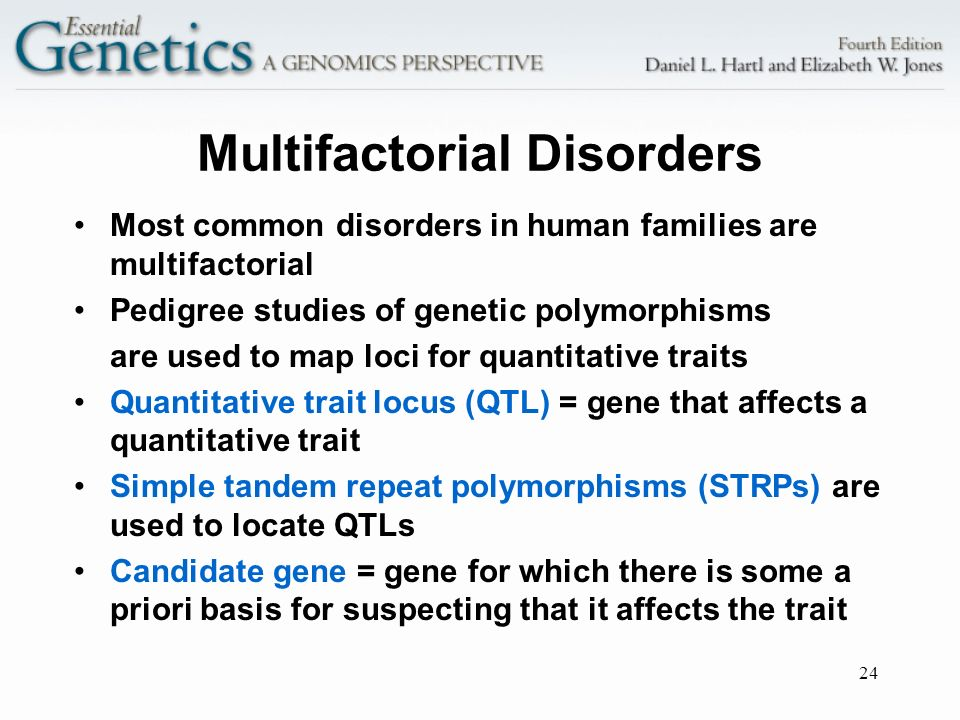 24 Multifactorial Disorders Most common disorders in human families are multifactorial Pedigree studies of genetic polymorphisms are used to map loci