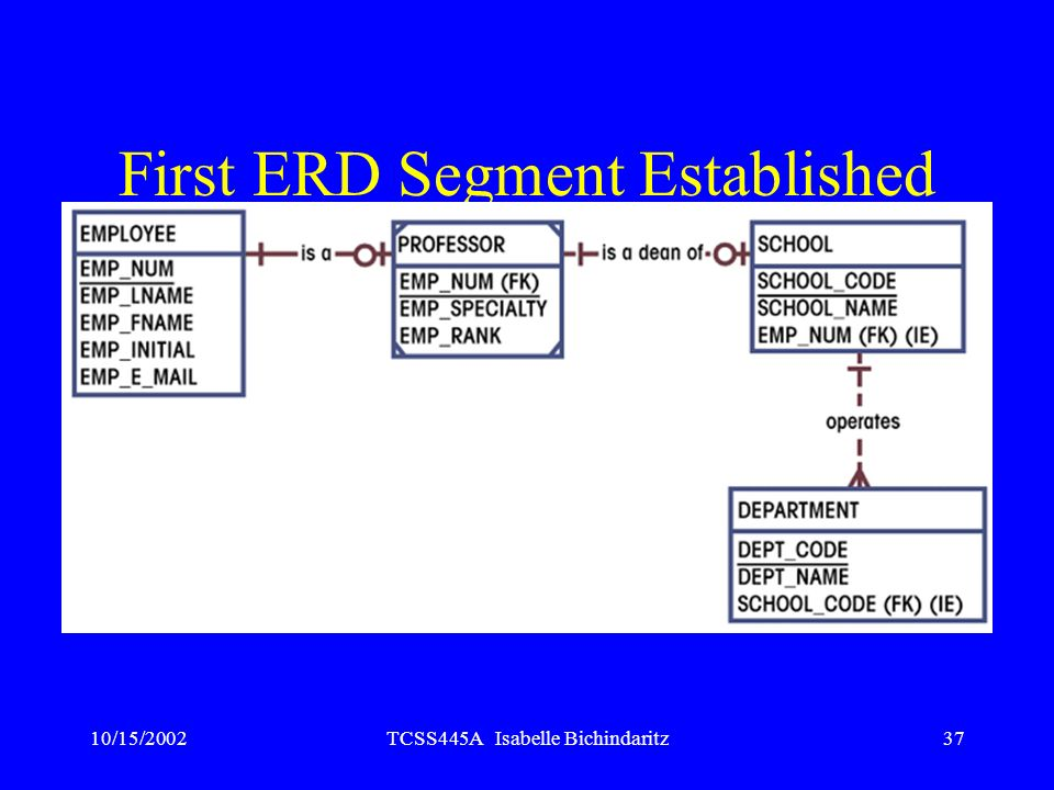 10/15/2002TCSS445A Isabelle Bichindaritz37 First ERD Segment Established Figure 3.43
