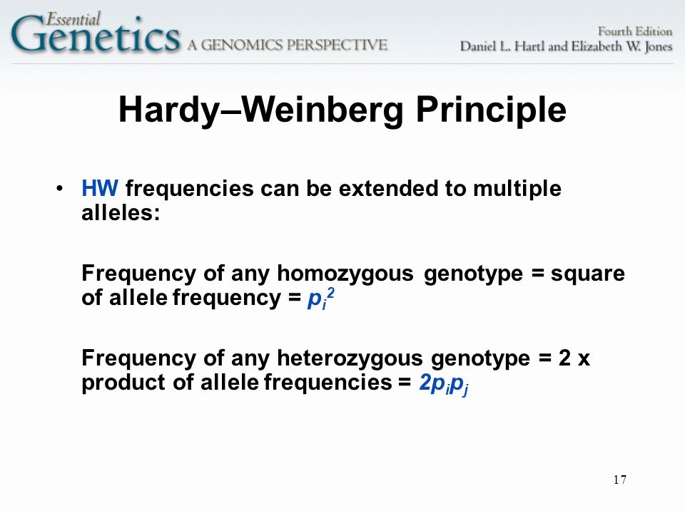 17 Hardy–Weinberg Principle HW frequencies can be extended to multiple alleles: Frequency of any homozygous genotype = square of allele frequency = p