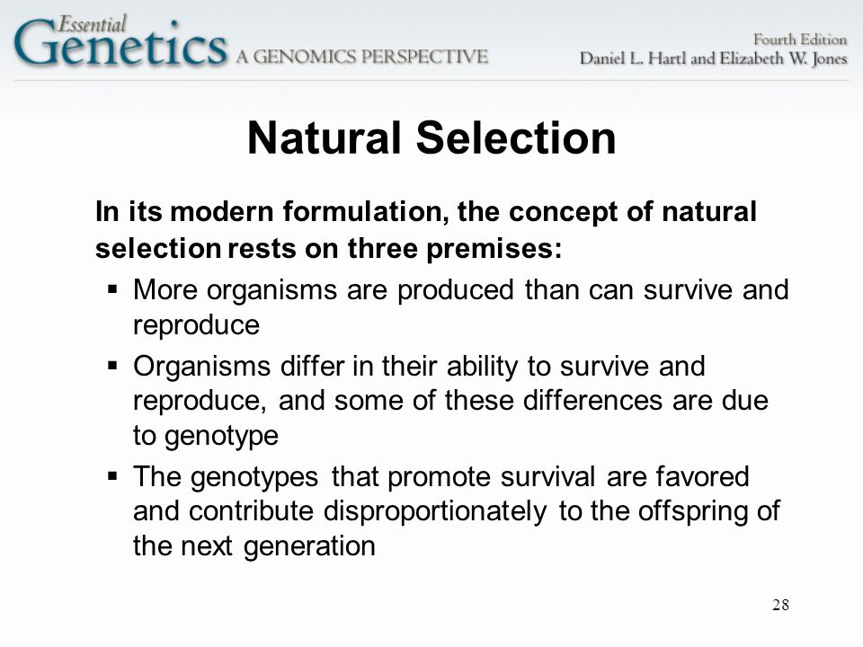 28 Natural Selection In its modern formulation, the concept of natural selection rests on three premises: More organisms are produced than can survive