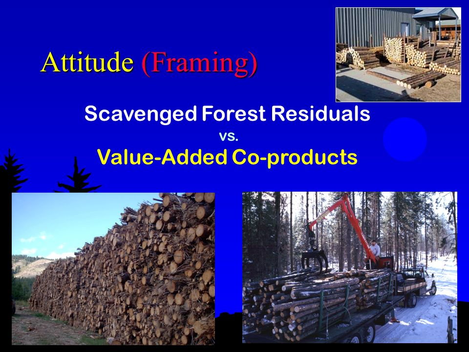 Attitude (Framing) Scavenged Forest Residuals vs. Value-Added Co-products Forest Concepts
