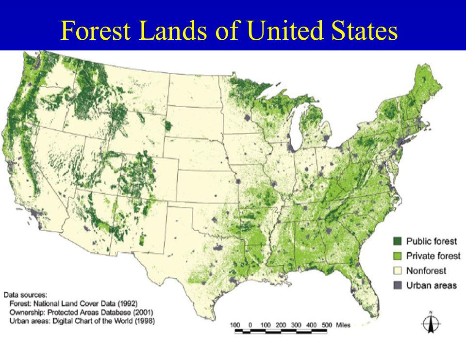 Forest Lands of United States